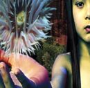 FSOL-Lifeforms_Cover front