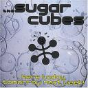 sugarcubes-here-today-cover.jpg