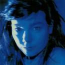 Björk-Telegram_Cover front