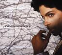 prince-musicology-cover-front.jpg