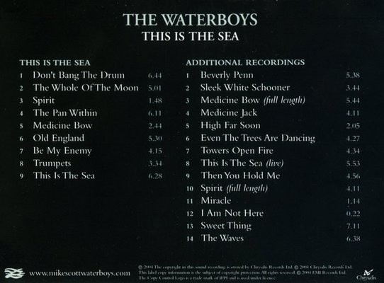 Waterboys-This Is The Sea Cover Back